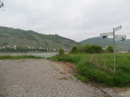 IMG 2557